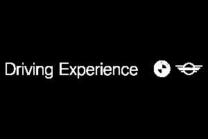 logo_DrivingExperience_300x200